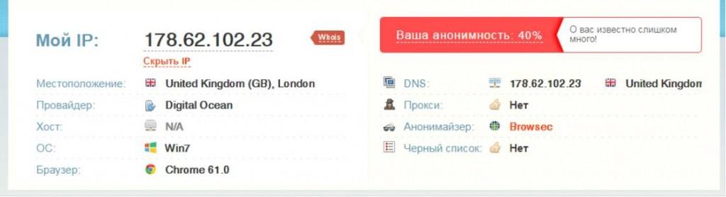 Результаты проверки IP-адреса на месторасположение